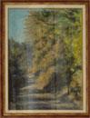 Galli Gian Marco Scorcio boschivo in Valle Olona